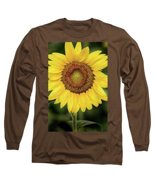 Another Stunning Flower Long Sleeve T-Shirt