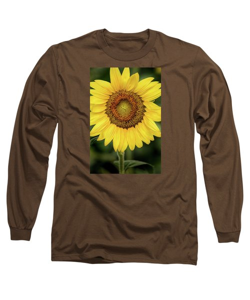 Another Stunning Flower Long Sleeve T-Shirt