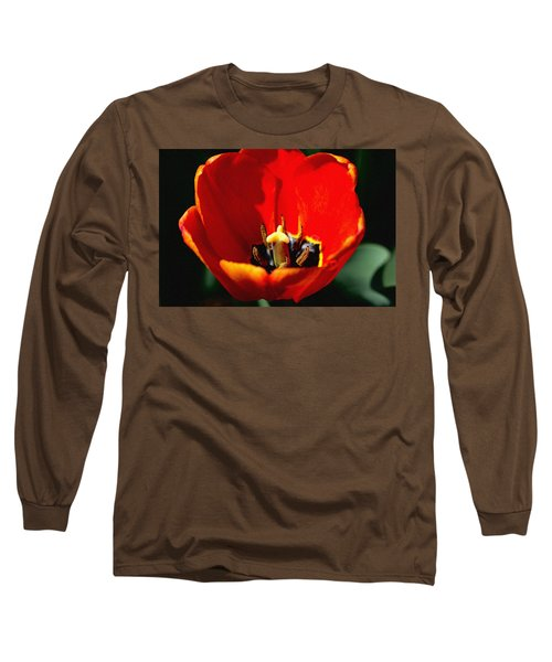 April Tulips Long Sleeve T-Shirt
