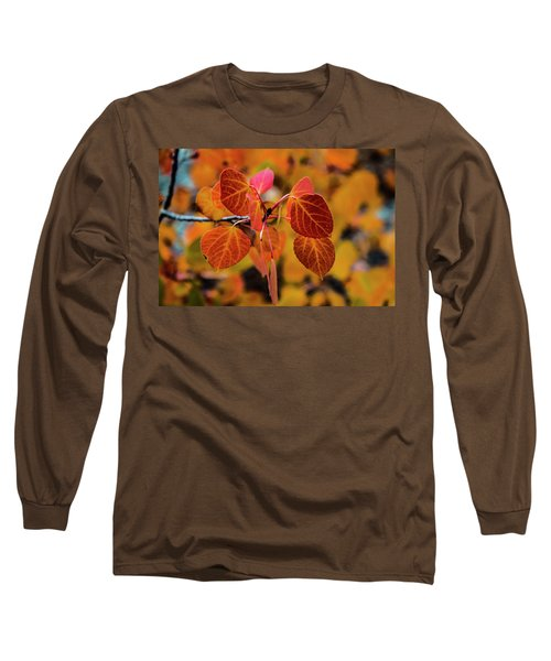 Aspen Aflame Long Sleeve T-Shirt
