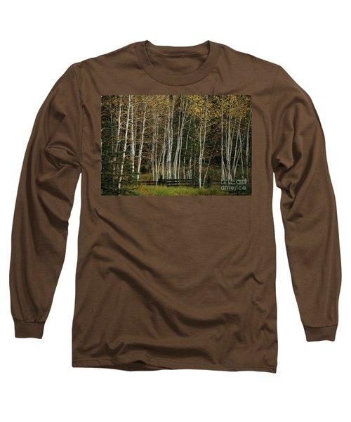 Aspens In The Fall Long Sleeve T-Shirt
