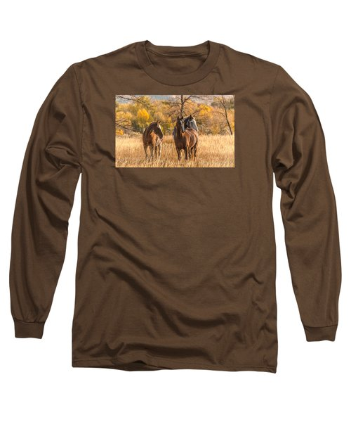 Long Sleeve T-Shirt featuring the photograph Autumn Beauty At Dawn by Yeates Photography