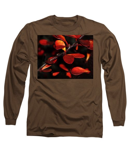 Autumn Details Long Sleeve T-Shirt