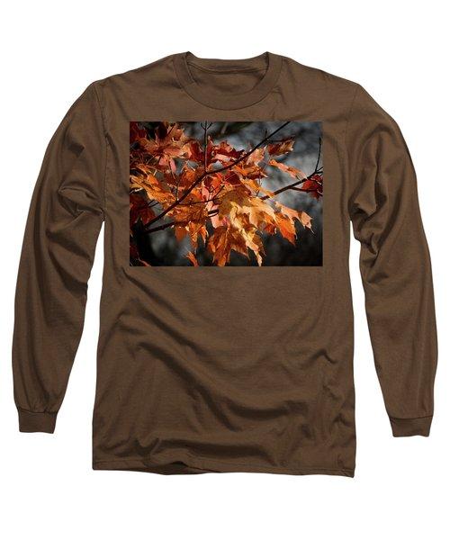 Autumn Gray Long Sleeve T-Shirt by Kimberly Mackowski