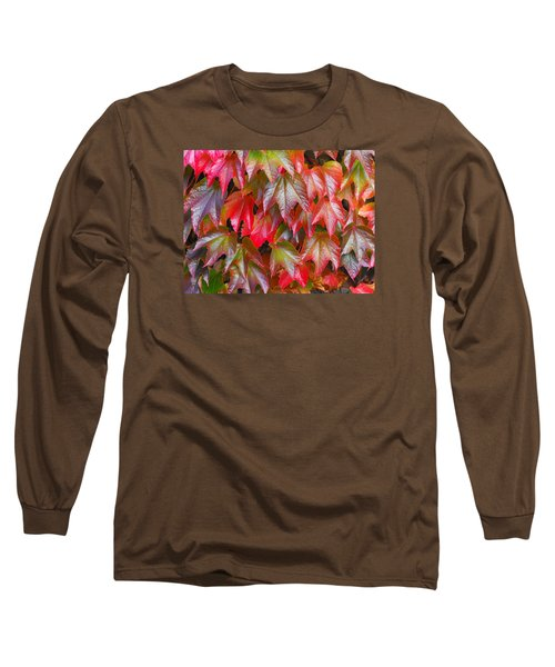 Autumn Leaves 01 Long Sleeve T-Shirt