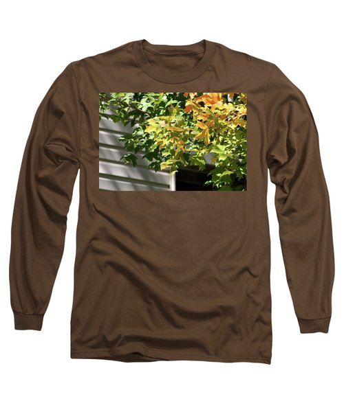 Autumn Leaves Against White Long Sleeve T-Shirt by Michele Wilson