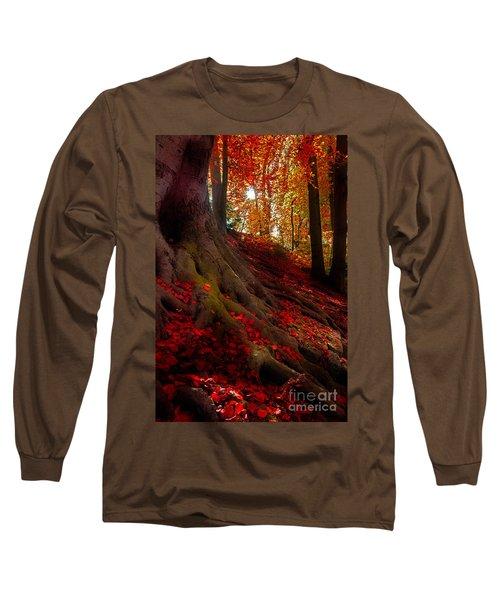 Autumn Light Long Sleeve T-Shirt by Hannes Cmarits