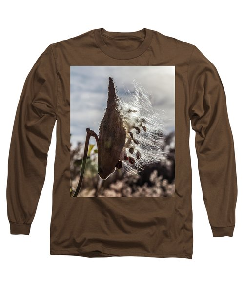 Back Lit Milkweed Pod Long Sleeve T-Shirt