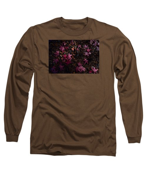 Back To The Earth Long Sleeve T-Shirt by Derek Dean