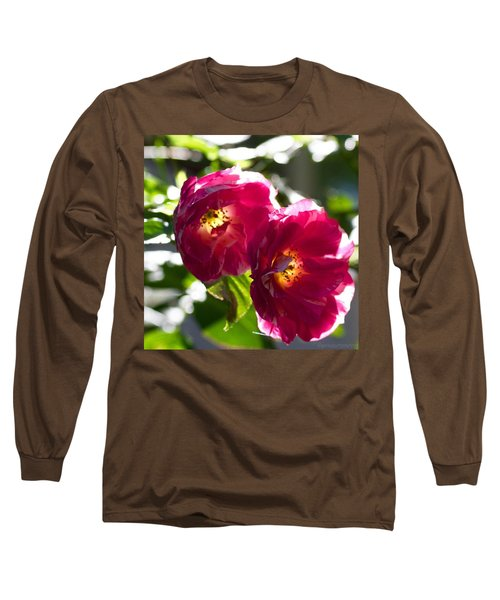 Backlit Roses In My Garden Long Sleeve T-Shirt by Anna Porter