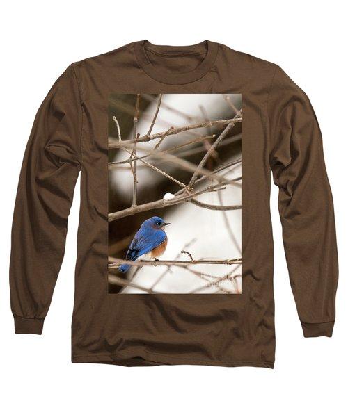 Backyard Bluebird Long Sleeve T-Shirt