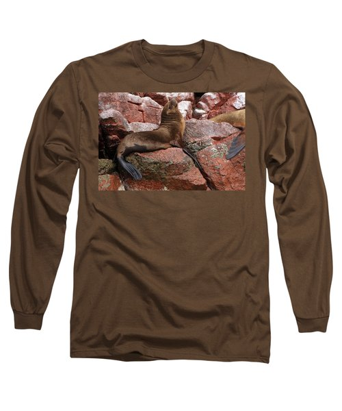 Long Sleeve T-Shirt featuring the photograph Ballestas Island Fur Seals by Aidan Moran