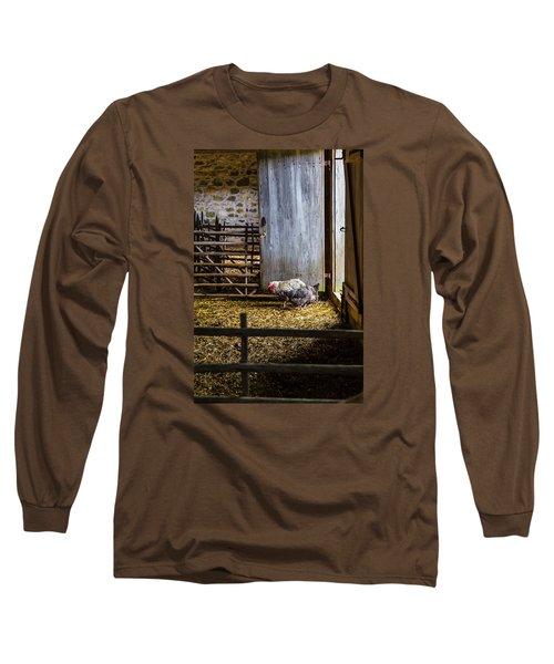 Barnyard Friends Long Sleeve T-Shirt