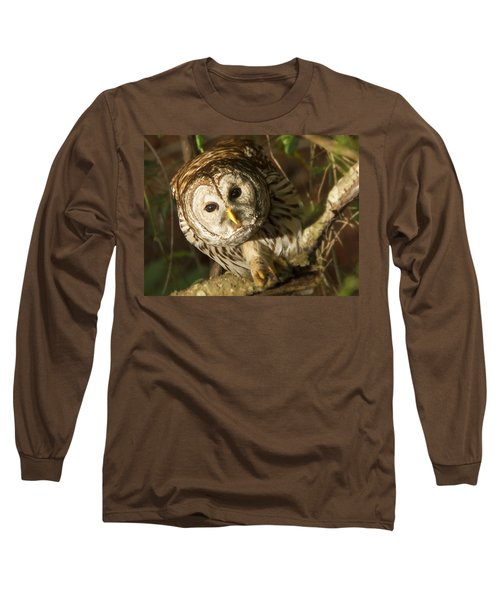 Barred Owl Peering Long Sleeve T-Shirt