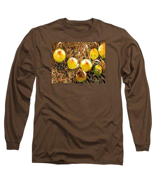 Long Sleeve T-Shirt featuring the photograph Barrel Cactus Fruit by Merton Allen
