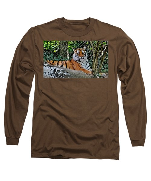 Beautiful Tiger Long Sleeve T-Shirt