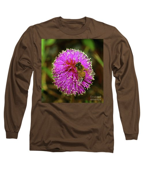 Long Sleeve T-Shirt featuring the photograph Bee On Puff Ball by Larry Nieland
