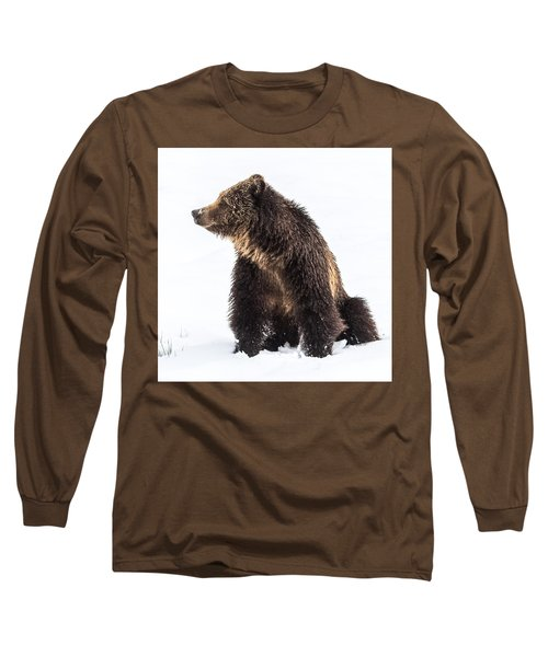 Long Sleeve T-Shirt featuring the photograph Beryl Springs Grizzly Sow In Snow by Yeates Photography