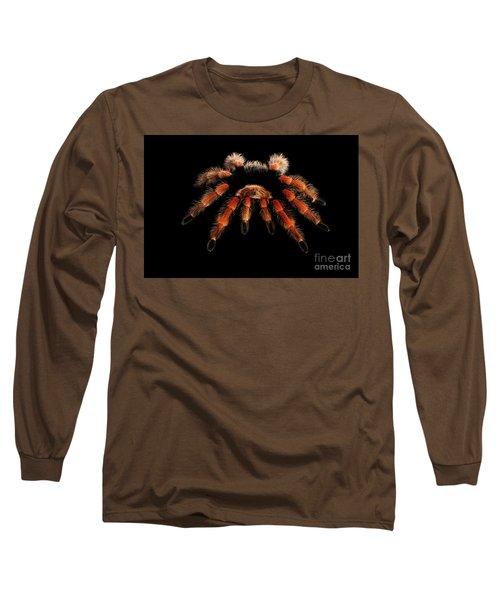 Big Hairy Tarantula Theraphosidae Isolated On Black Background Long Sleeve T-Shirt