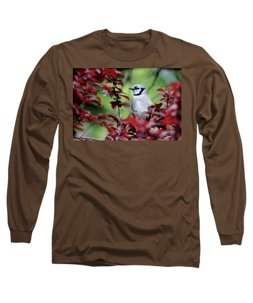 Blue Jay In The Plum Tree Long Sleeve T-Shirt by Trina Ansel