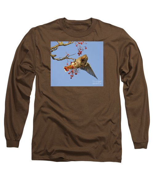 Bohemian Waxwing Long Sleeve T-Shirt by Liz Leyden