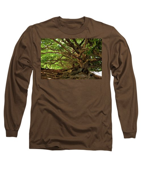 Branches And Roots Long Sleeve T-Shirt by James Eddy