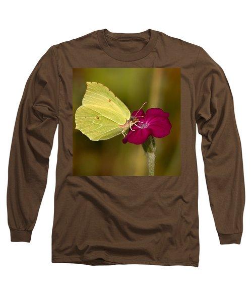 Long Sleeve T-Shirt featuring the photograph Brimstone 1 by Jouko Lehto