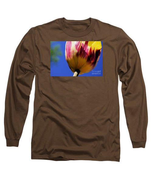 Bugs  Pov  Long Sleeve T-Shirt by John S
