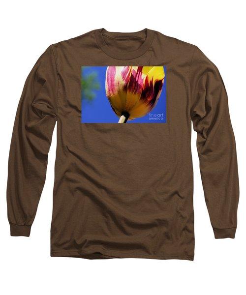 Bugs  Pov  Long Sleeve T-Shirt