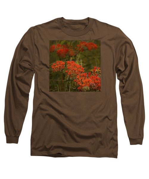 Butterfly Weed Asclepias Tuberosa Long Sleeve T-Shirt by Bellesouth Studio