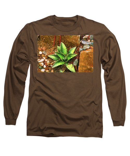 Cacti Moods In Technicolor Long Sleeve T-Shirt by Terry Cork