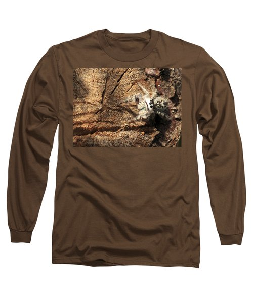 Canopy Jumping Spider Long Sleeve T-Shirt