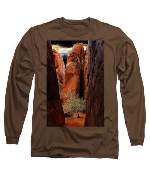 Long Sleeve T-Shirt featuring the photograph Canyon Tree by Harry Spitz