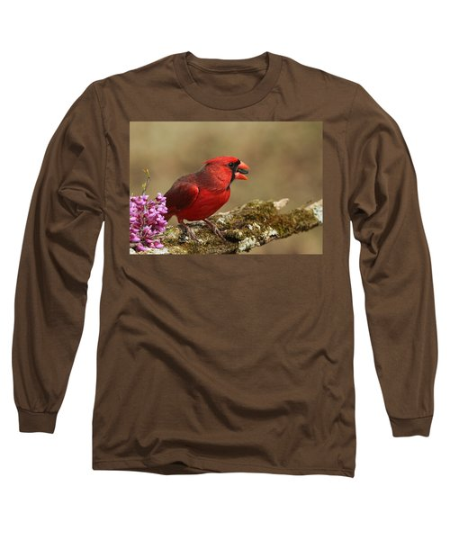 Cardinal In Spring Long Sleeve T-Shirt by Sheila Brown