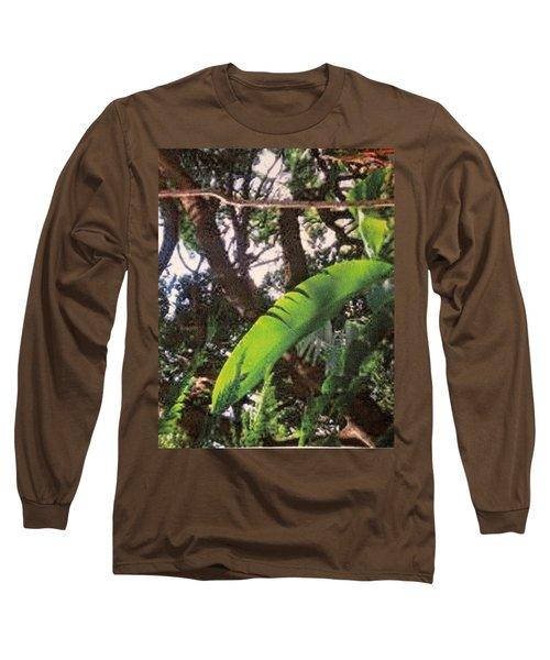 Long Sleeve T-Shirt featuring the photograph Caribbean Banana Leaf by Ian  MacDonald
