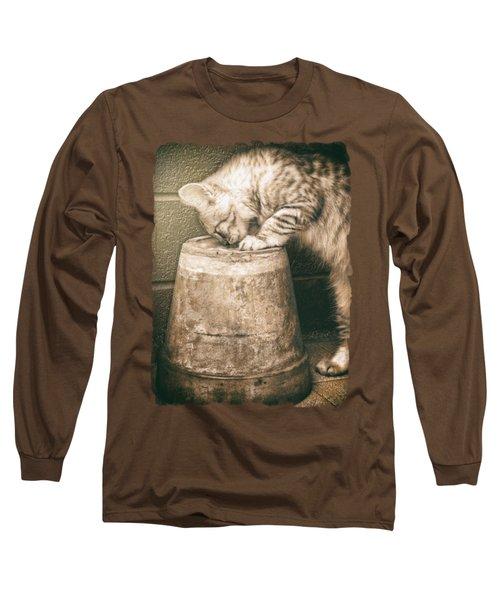 Cat Curiosity... Long Sleeve T-Shirt