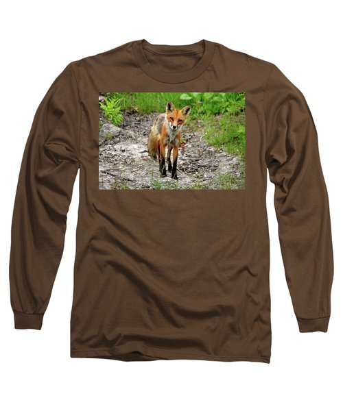 Long Sleeve T-Shirt featuring the photograph Cautious But Curious Red Fox Portrait by Debbie Oppermann