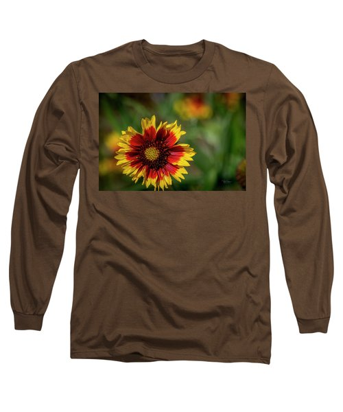 Celebration Of Yellow And Red Long Sleeve T-Shirt