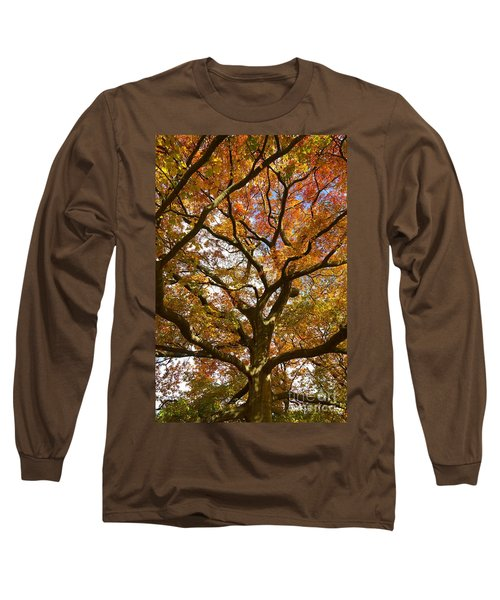 Changing Of The Oak Long Sleeve T-Shirt