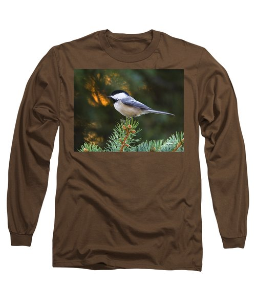 Chickadee In Spruce  Long Sleeve T-Shirt