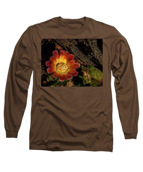 Cholla Long Sleeve T-Shirt by Martina Thompson