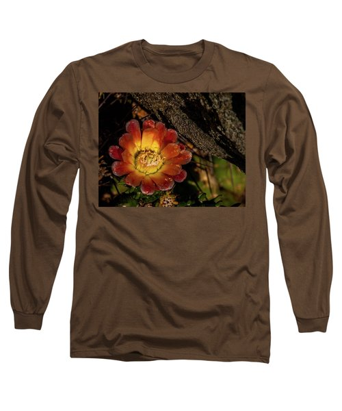 Cholla Long Sleeve T-Shirt