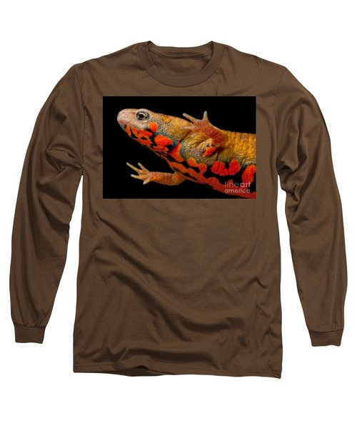 Chuxiong Fire Belly Newt Long Sleeve T-Shirt by Dant� Fenolio