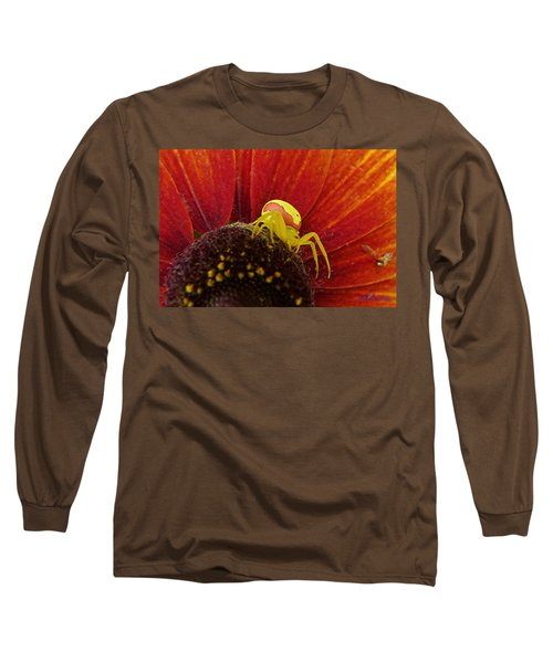 Color Changing Spider Long Sleeve T-Shirt by John Selmer Sr