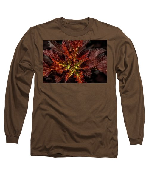 Long Sleeve T-Shirt featuring the photograph Colorful Leaves by Paul Freidlund