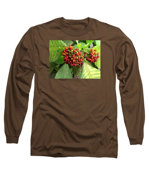 Costa Rican Berries Long Sleeve T-Shirt by Angela Annas