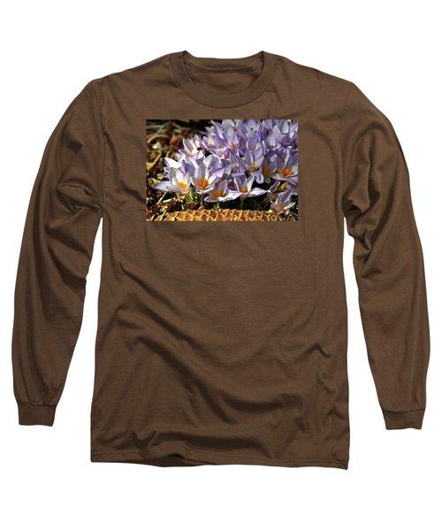 Crocuses Serenade Long Sleeve T-Shirt by Ed  Riche