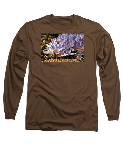 Crocuses Serenade Long Sleeve T-Shirt
