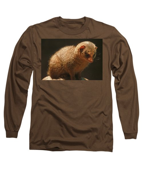 Long Sleeve T-Shirt featuring the photograph Curiosity At Rest by Laddie Halupa