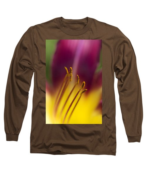 Daylily Abstract Long Sleeve T-Shirt